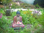 Green Gulch Buddha Nature