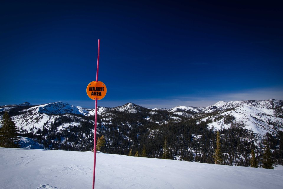 avalanche area ~d nelson