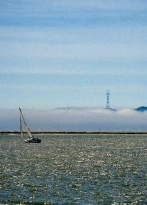 bay sails