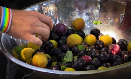 plum delicious