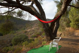 sturdy hammock support