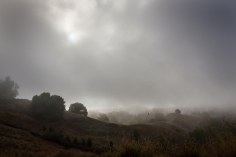 hillside sun fog
