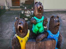 welcome home bears