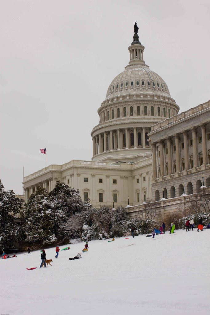 capitol hill's best use: sledding!
