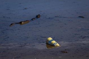 storm debris floating