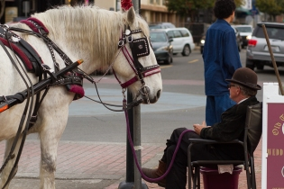now you pull the carriage!