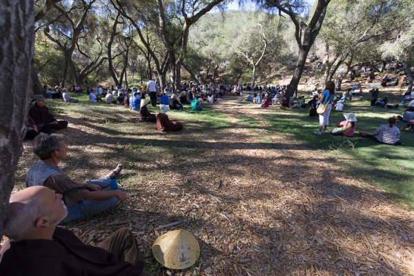 oak grove sitting meditation