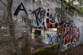lakeride-5 graffiti ruins