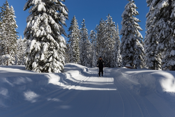 cruising on a groomed track