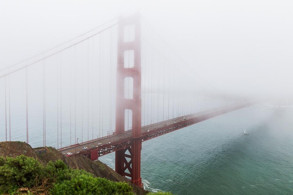 fog's golden span ~d nelson