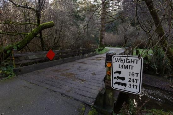 weight limit bridges-3