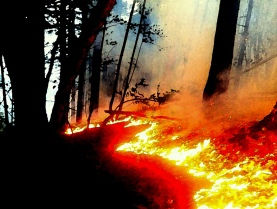mendocino hills blazing, press democrat