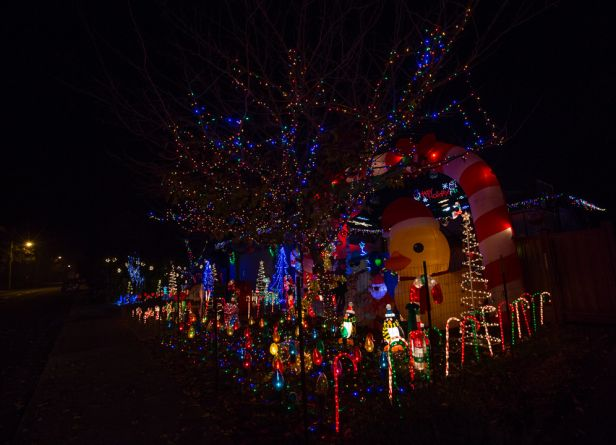 lights ornaments 2