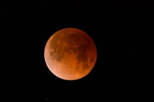 look-up! super blue blood lunar eclipse 2