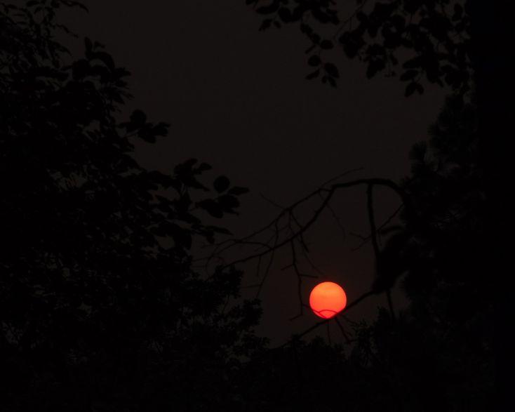 smoke-tinted N Cal evening sun