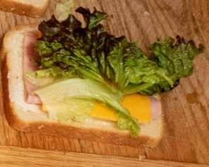 simple sandwich to go along with fruit, cookie, chips & water