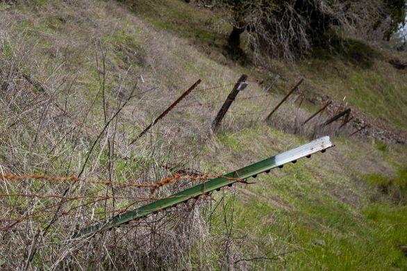 fallen fences