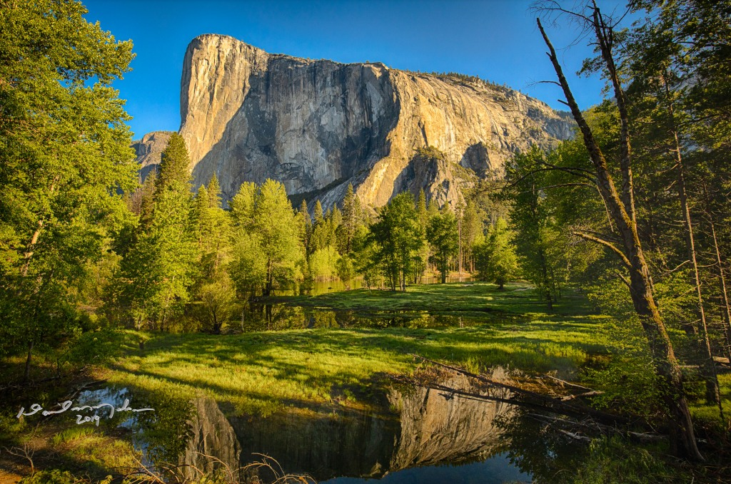 Morning reflection at El Capitan