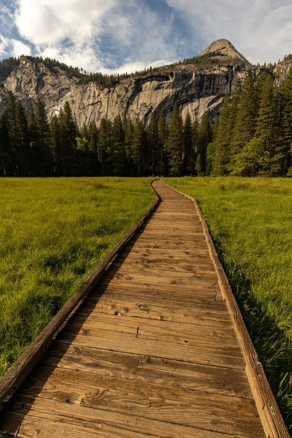 Leidig meadow trail ~d nelson (click to enlarge)
