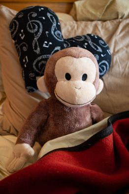 happy & free monkey